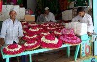 Acmir - Dargah - Cicek Saticisi