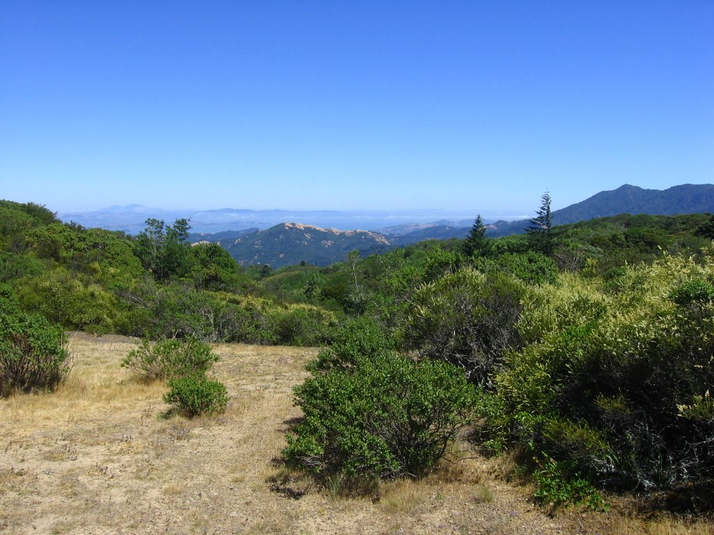tamarancho map with Pine Mountain Loop Ride on Pine Mountain Loop Ride besides The Worlds Most Massive And Longest Venomous And Nonvenomous Snakes 1 as well Erik Landsness as well 60 gertrude ln novato ca usa 176747 besides 23058438.