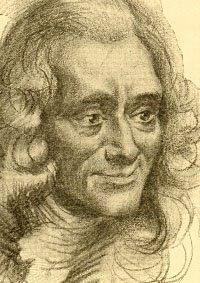 Voltaire Essay