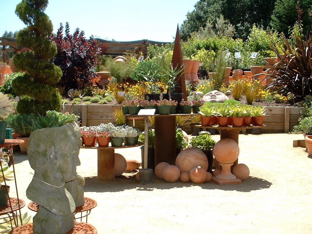 today in the garden virtual nursery tour part 1 rh todayinthegarden blogspot com