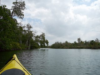 Kayaking at Lover's Key, Florida; Photography by Troy Thomas