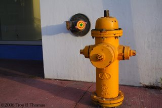 A hydrant in Miami's South Beach, Florida; Photography by Troy Thomas