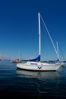 Wind Hawk at anchor