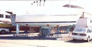 Wind Hawk - Bottom