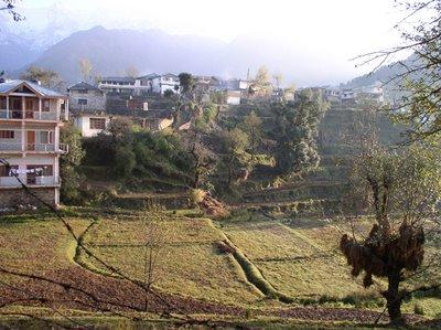 Land Use Locally