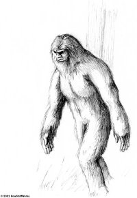 mysterious bigfoot