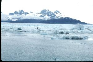 columbia glacier is retreating faster - nature & environmental news