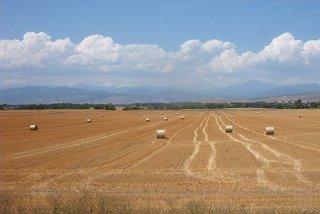 Drought, water worries cloud skies for US farmers
