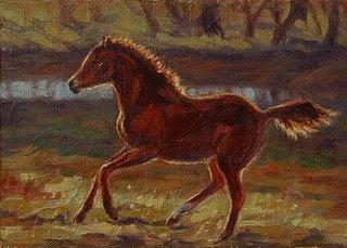 Foal by Lori Levin