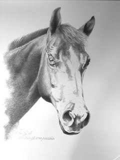 Horse Portrait by Levin