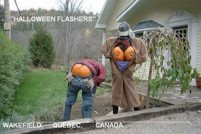 Funny Picture - Holloween Flashers