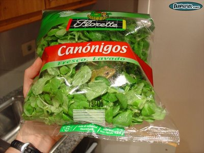 Funny Picture - Frog caught in salad packing (fresco lavado)