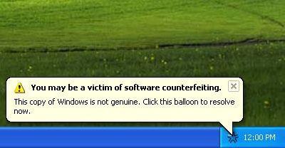 Microsoft genuino