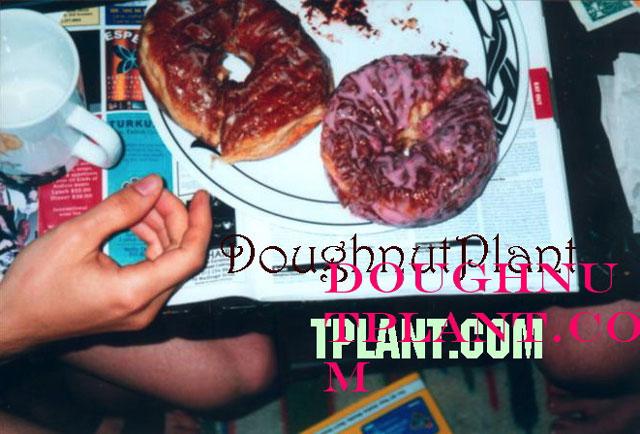 manhattan lower east side doughnut plant strawberry vanilla bean donuts