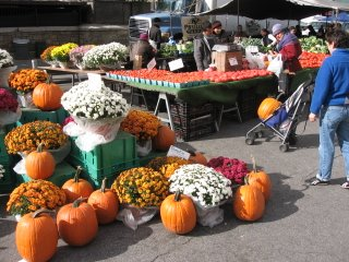 pumpkins baby stroller union square greenmarket