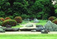 Jardinería - Como hacer para que nuestro césped se vea espléndido