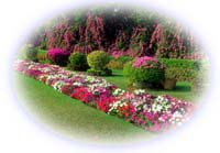 Jardinería - Calendario de Siembra