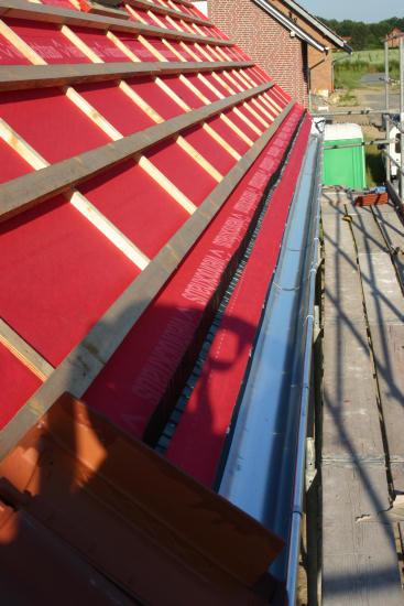 bautagebuch viebrock finkenhaus einbau dachfenster und regenrinnen. Black Bedroom Furniture Sets. Home Design Ideas