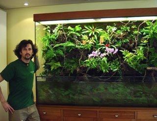 estensione dell'acquario - fai da te - discus club 2.0 - forum - Plexiglass Per Acquario Fai Da Te