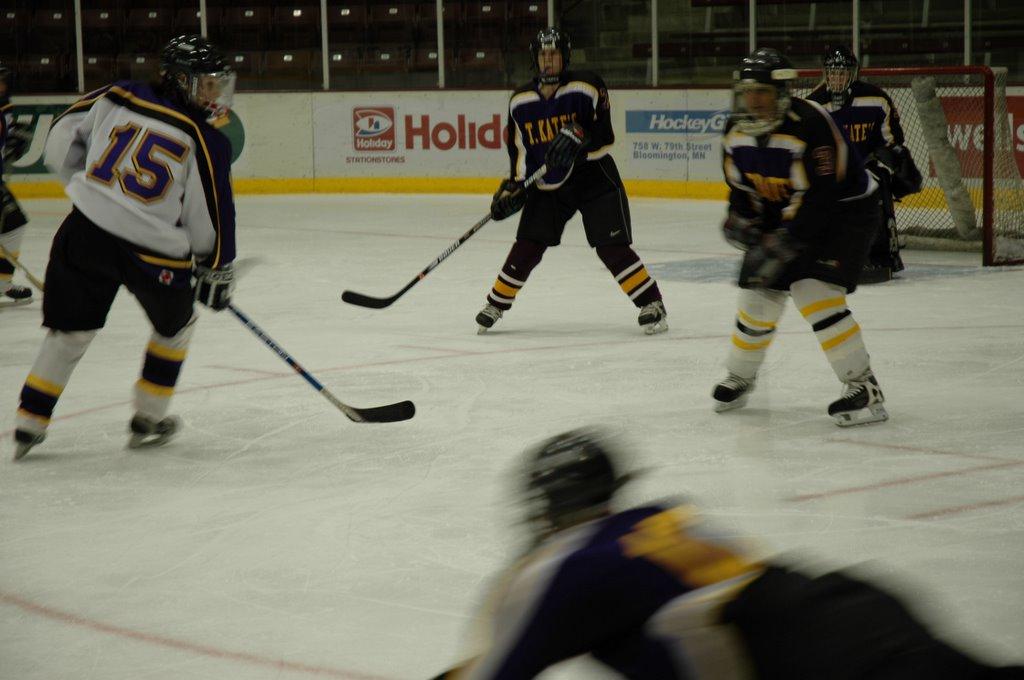2006 winter olympics hockey the 2006 winter olympics