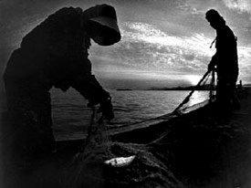 Pescadores cerca de Minamata