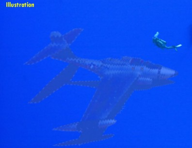 Kinross F-89 & Diver