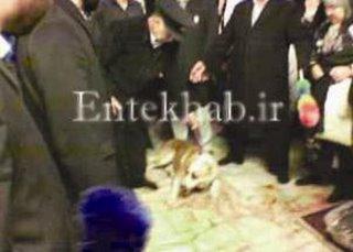 عکس شفا گرفتن در حرم امام رضا
