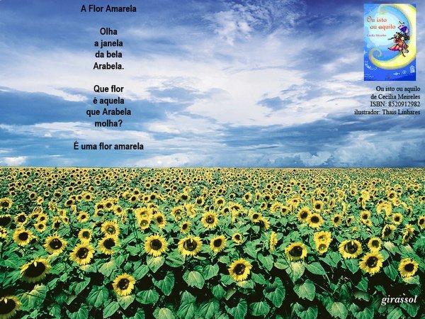 flor de jardim amarela:turminha G3V TGS: 30 Julho 2006
