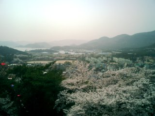 Looking Down on Chinhae