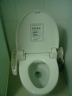 Electronic Toilet