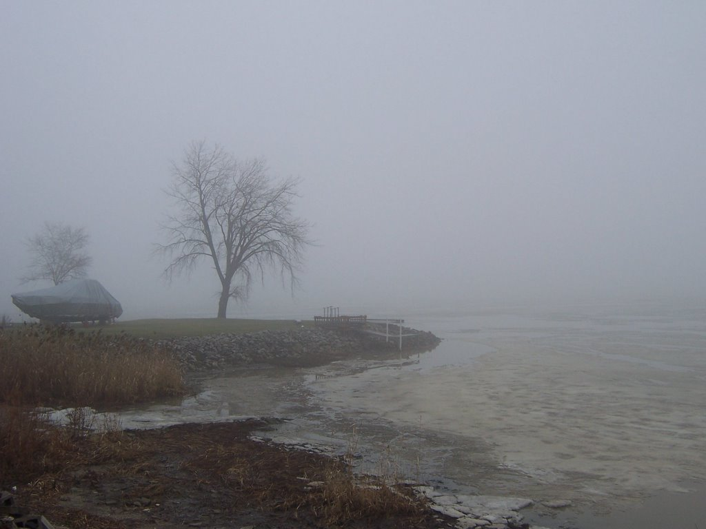 Fog rolling in off the Maumee Bay into Point Place, Toledo