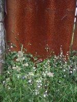 ferro oxidado