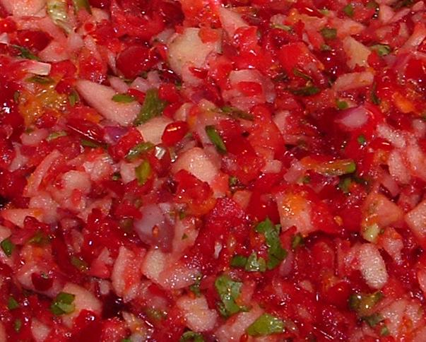 Cranberry Salsa Recipes — Dishmaps