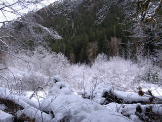 fourstream trail in the snow