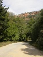 Therisso Road from Mournies