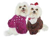 Martha Stewart Prison poncho for dogs
