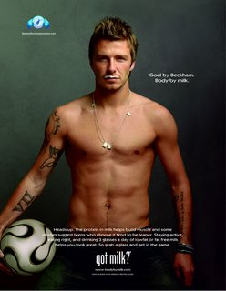 DAvid Beckham Gay Icon