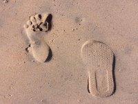 a split personality strolls along the beach