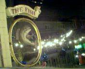 Fish Inn sign
