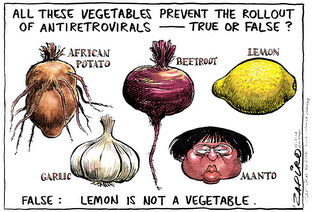 zapiro cartoon
