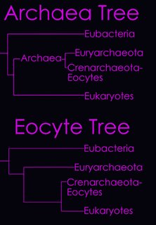 Archaea Eocyte Trees