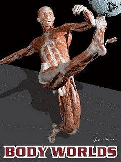 picture plastic corpse 2