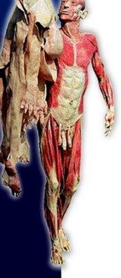 picture plastic corpse 1