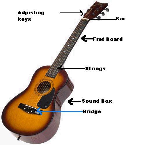 Guitar Info