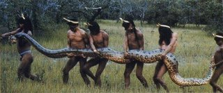 anaconda snake picture
