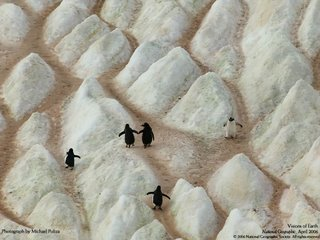 national geographic photograph