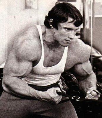 Arnold Schwarzenegger training in gymnasium