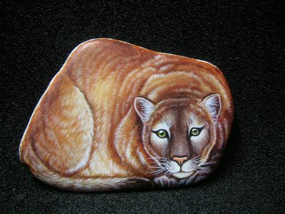 pet painting on rock