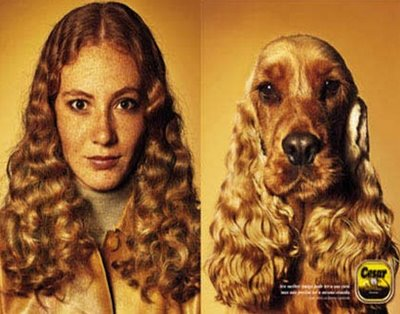 fanatic dog owner