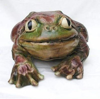 dare to sleep with this king frog